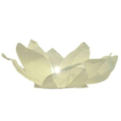 Weisse Wasserlaterne in Rosenform